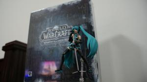 Wrath of The Lich King's Collector's Edition!